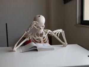 studiare[1]