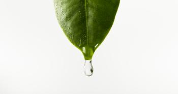 La natura al servizio dell'igiene orale